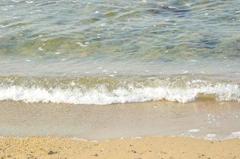 透き通ってキレイな海♪