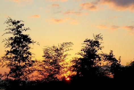 オレンジ色の空♪