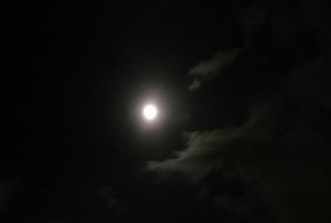 月がボンヤリ・・・