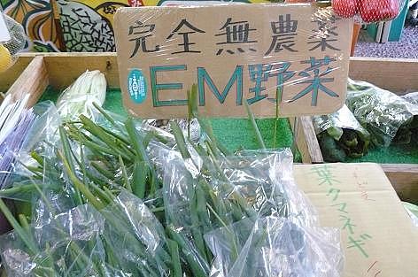 EM野菜だ♪