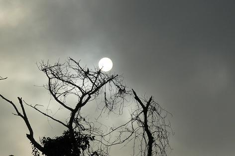 日が落ちてきて・・・