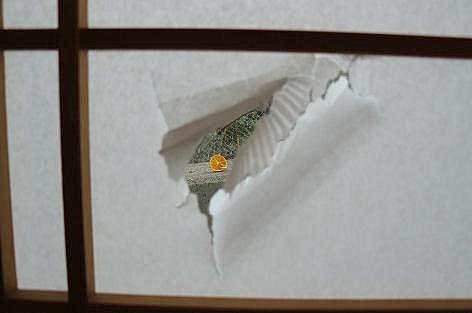 張り込み窓!?