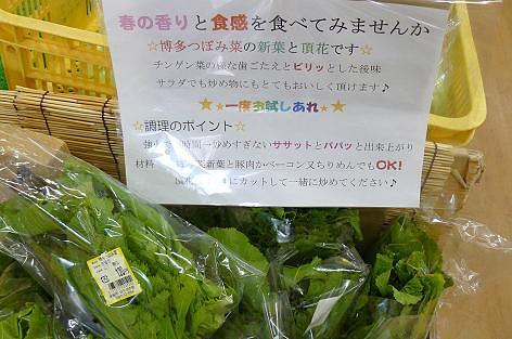 博多つぼみ菜♪