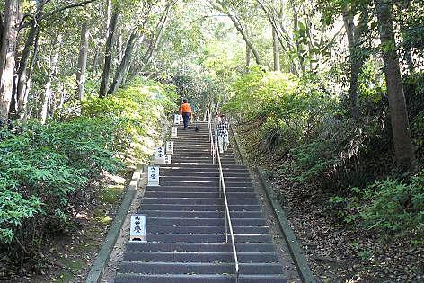 階段がいくつも・・・