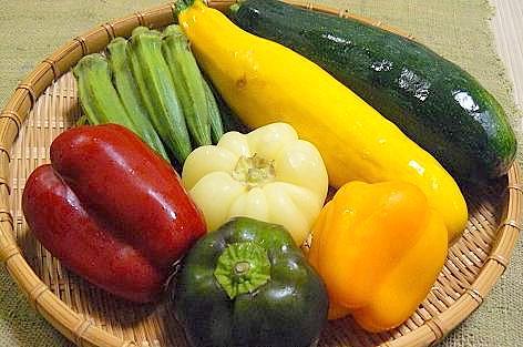 夏野菜の頂き物♪