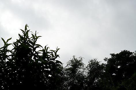 曇り空が続き・・・