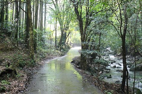 道路が濡れて・・・