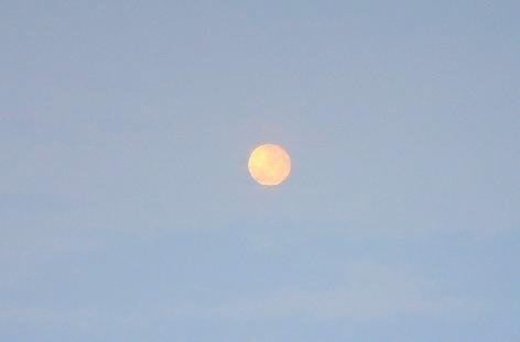 満月が出て・・・