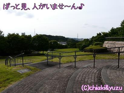 20080615-1.jpg