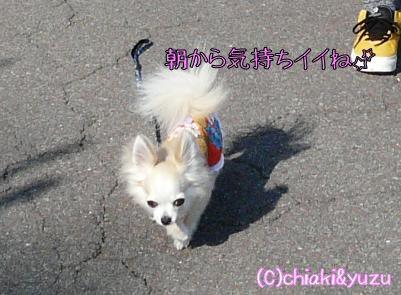 20080709-7.jpg