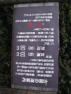 200710171428122