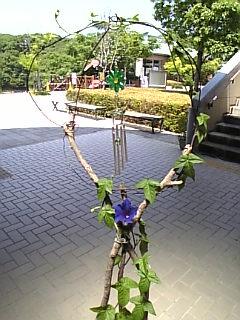 20080808160109