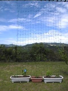 20090804190334