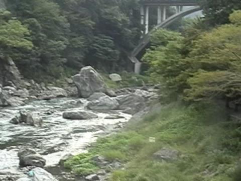 澄んだ川って ほんと気持ちいいね^^