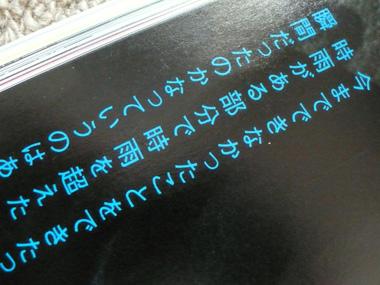 P1030828.jpg