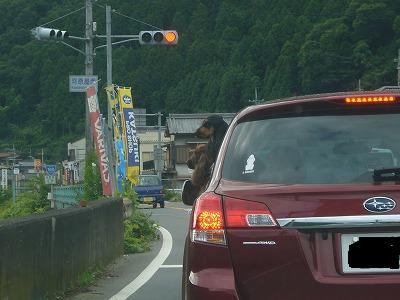 奈良遠征1