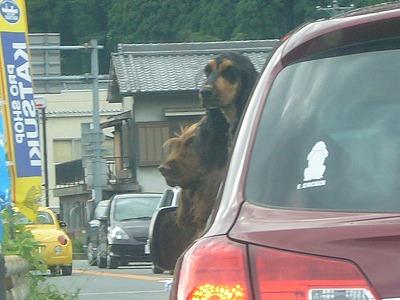 奈良遠征2