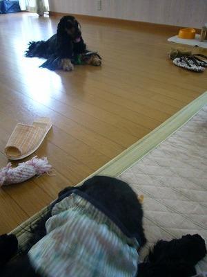 奈良遠征②1