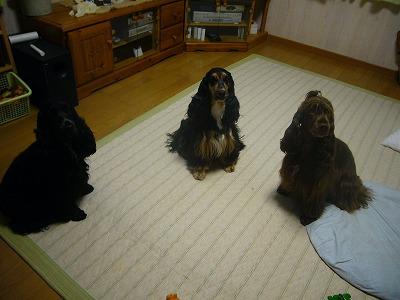 奈良遠征②11