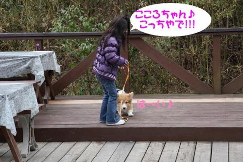 IMG_2357_20090304012410.jpg
