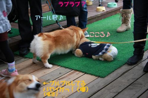 IMG_2440.jpg
