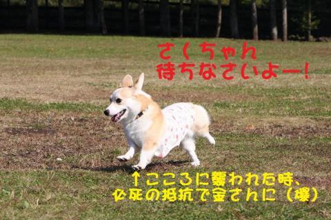 IMG_3576.jpg