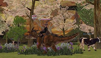 bi_20060803002835_1.jpg