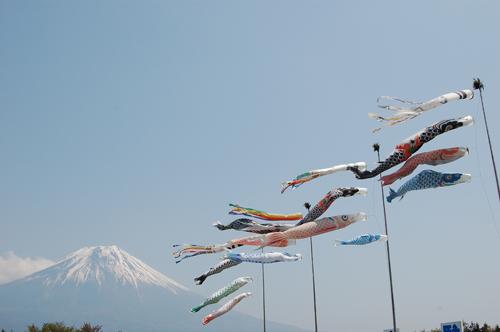 富士山とこいのぼり2