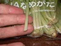 水菜比較2