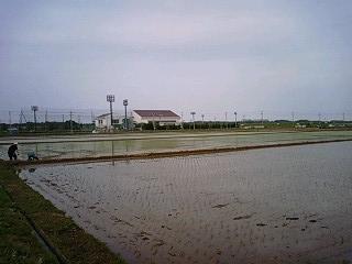 水田と体育館
