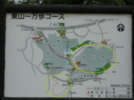 090718higashiyama9.jpg