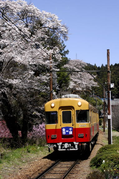 大井川鉄道2
