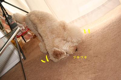 20080806-06.jpg