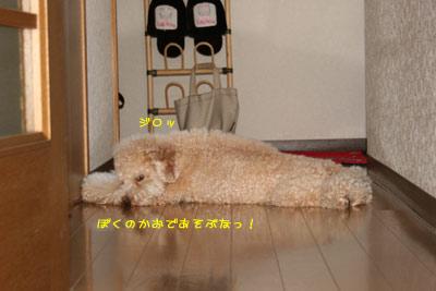 20080911-06.jpg