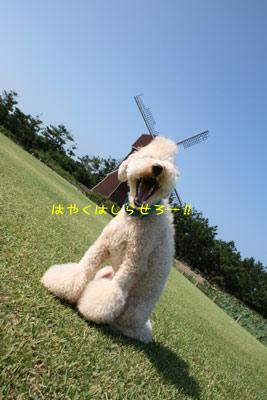 20080922-01.jpg