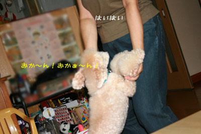20080925-01.jpg