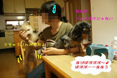 20080925-05.jpg