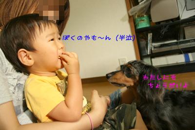 20080927-07.jpg