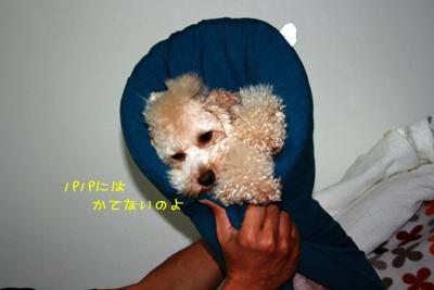 20081013-04.jpg