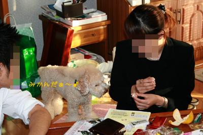 20081105-03.jpg