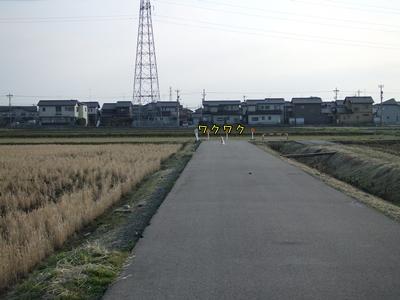 20090206-06.jpg