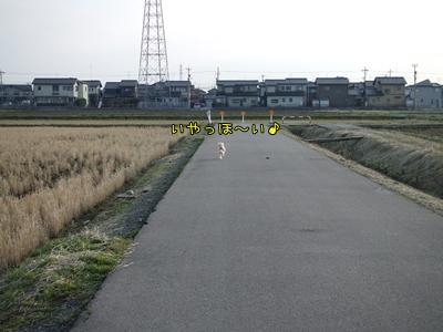 20090206-07.jpg