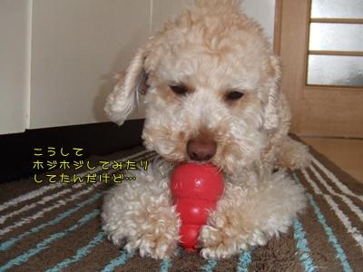 20090331-04.jpg