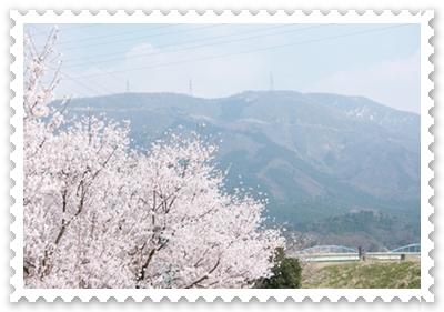 20090416-15.jpg