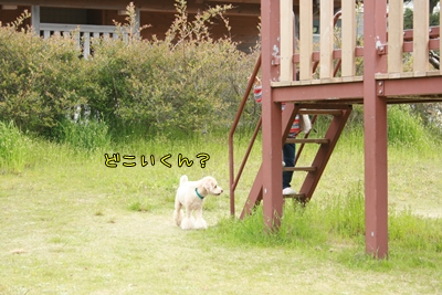 20090519-06.jpg