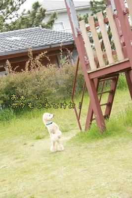 20090519-08.jpg