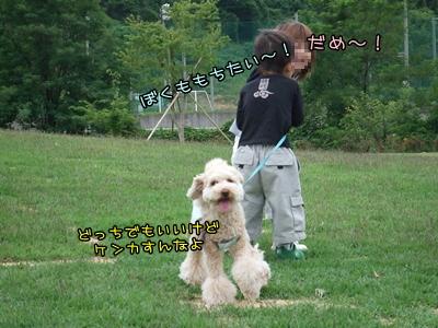 20090611-07.jpg