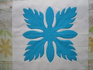 12color(青・ジンジャー)