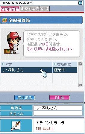 2_20090112123301.jpg
