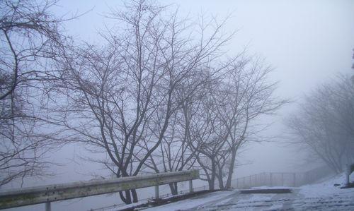 風景-20080205-3